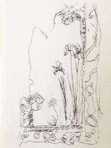 iris-drawing
